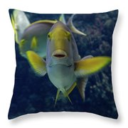 Tropical Fish Poses. Throw Pillow