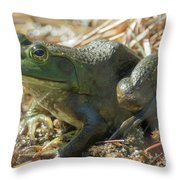 True Frog Throw Pillow by Sally Sperry