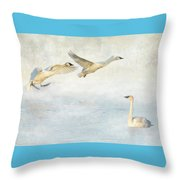 Trumpeter Swans - Don't Land On Me Throw Pillow