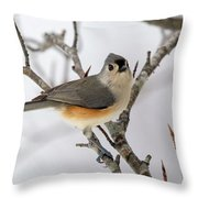 Tufted Titmouse Winter Tranquility Throw Pillow
