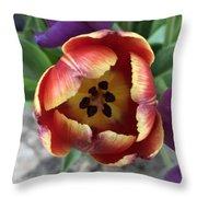 Tulip Beauty Throw Pillow