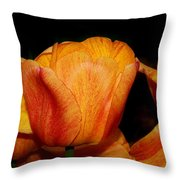 Tulips On A Black Background Throw Pillow