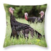 Turkey Flock Throw Pillow