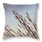 Turkey Foot Grass At Sunset Throw Pillow