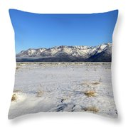 Turnagain Arm And Chugach Range From Hope Alaska Throw Pillow