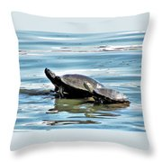 Turtles - Mother And Child Throw Pillow