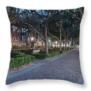 Twilight Panorama Of Charleston Waterfront Park Promenade And Shady Canopy Of Oaks - South Carolina Throw Pillow