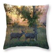 Two Deer Sunset Throw Pillow