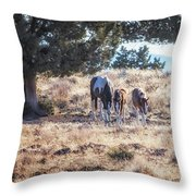 Two For One Throw Pillow by Belinda Greb