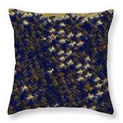 ucla Inspired Throw Pillow