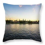 University Tampa Throw Pillow