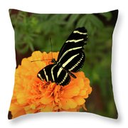 Up Close Monarch Butterfly Throw Pillow