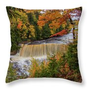 Upper Tahquamenon Autumn Colors -0007 Throw Pillow
