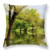 Veteran's Lake 01 Throw Pillow by Rob Graham