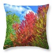 Vibrant Autumn Hues At Cornell University - Ithaca, New York Throw Pillow