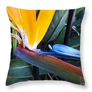 Vibrant Bird Of Paradise #2 Throw Pillow