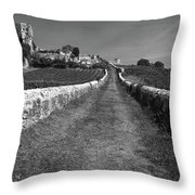Vineyard In Saint-emilion Throw Pillow
