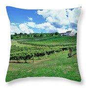 Vineyard, Whangarei, Northland, New Throw Pillow