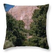 Virgin River And Cliff In Zion National Park, Utah - Utah300 00303 Throw Pillow