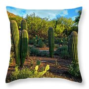 Vislumbre De Sonoran H1833 Throw Pillow by Mark Myhaver