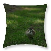 Waddling Ducklings Throw Pillow