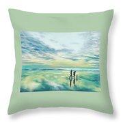 Walk At Sunset Throw Pillow