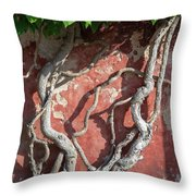 Walking Wall Throw Pillow