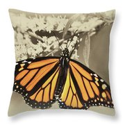 Wandering Migrant Butterfly Throw Pillow