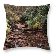 Washington Creek Throw Pillow