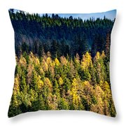 Washington - Gifford Pinchot National Forest Throw Pillow