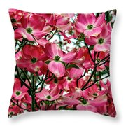 Washington State Magnolia Throw Pillow by Mae Wertz