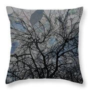 Wasteway Willow 04 Throw Pillow