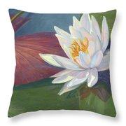Water Beauty Throw Pillow