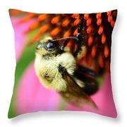 Water Drop On Bee Eye Throw Pillow