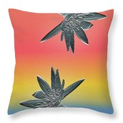 Water Lily Duo Two Throw Pillow