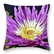 Water Lily On The Pond Throw Pillow