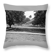 Water Spray Orchard Throw Pillow