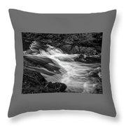 Waterfalls At Ricketts Glenn Throw Pillow by Louis Dallara