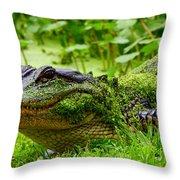Wearin O' The Green Throw Pillow