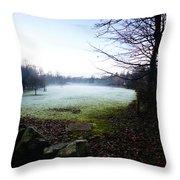 Weird Mist Throw Pillow