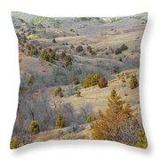 West Dakota Hills Reverie Throw Pillow