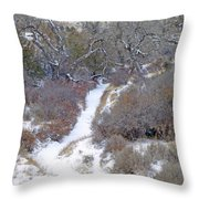 West Dakota January Prairie Throw Pillow