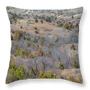 West Dakota Prairie Reverie Throw Pillow