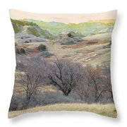 Western Edge Treasure Throw Pillow