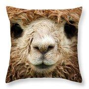 Waterlogged Throw Pillow