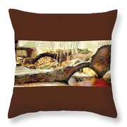 Weymouth Furnace 1802-1862 Throw Pillow