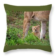What Could Be Cuter Than A Baby Lion Cub? Throw Pillow