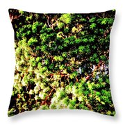 What Shade Of Green Throw Pillow