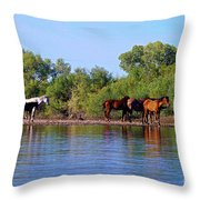 What's Egret Hunting Throw Pillow