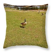 Where's Mine Throw Pillow